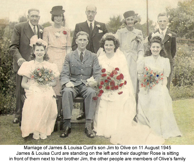 The Muddle Families Lineage And History Dorset Portland